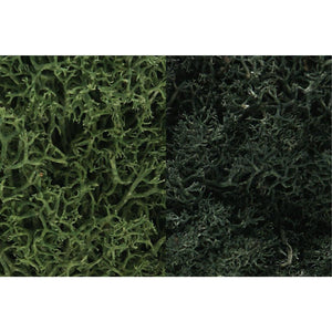 WOODLAND SCENICS Dark Green Mix Lichen