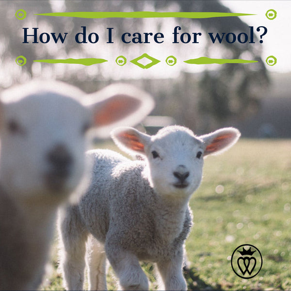 Prince of Scots How do I Care for Wool