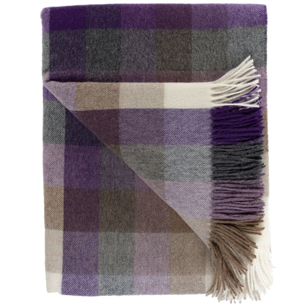 SOUTHAMPTON HOME Town & Country Check (Beach Plum)-Throws and Blankets-Prince of Scots-, Q330001-Prince of Scots