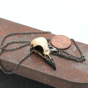 miniature magpie skull necklace