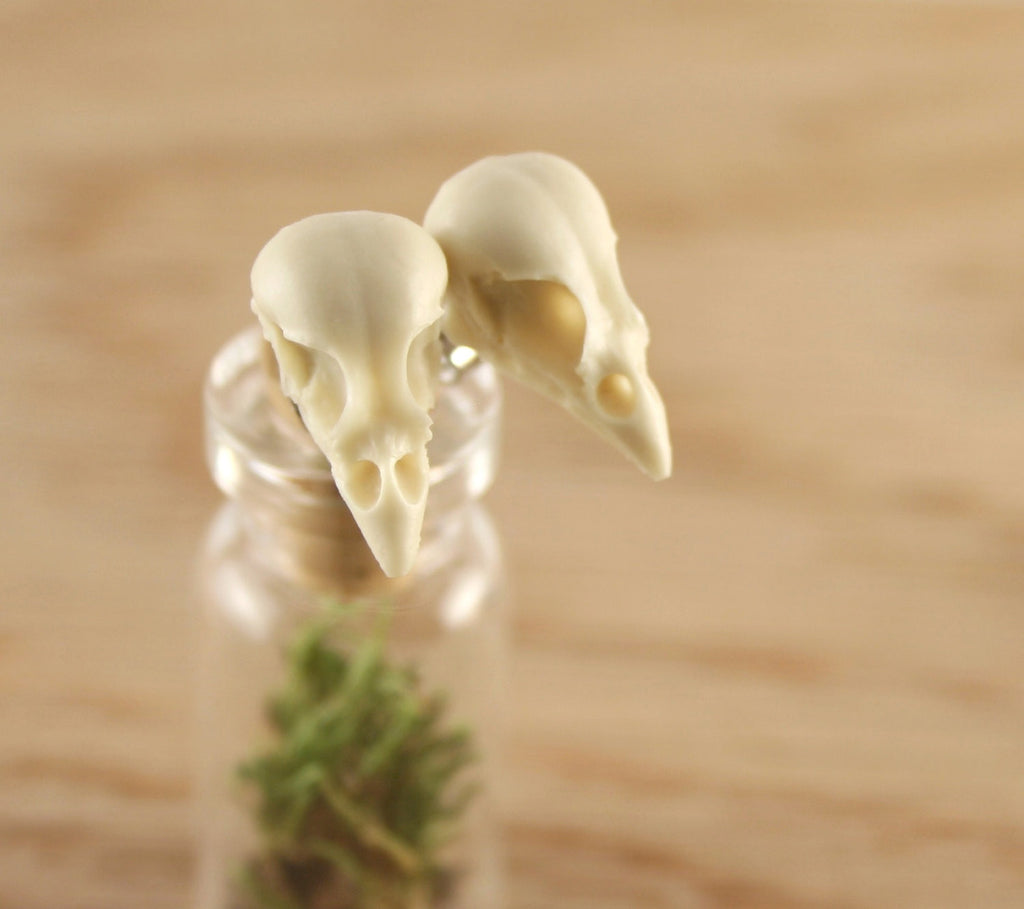 mini sparrow skull studs - bone white