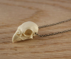 parakeet skull necklace