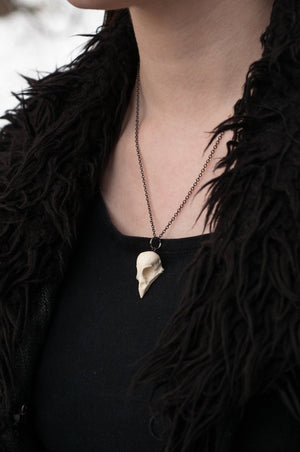 sparrow skull necklace