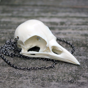 jackdaw skull necklace