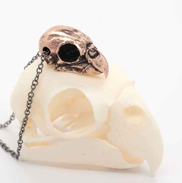 bronze parakeet skull necklace