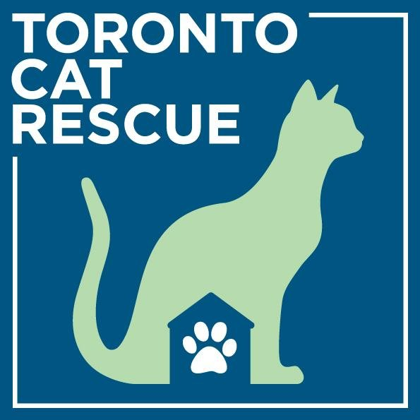 Toronto Cat Rescue Donation