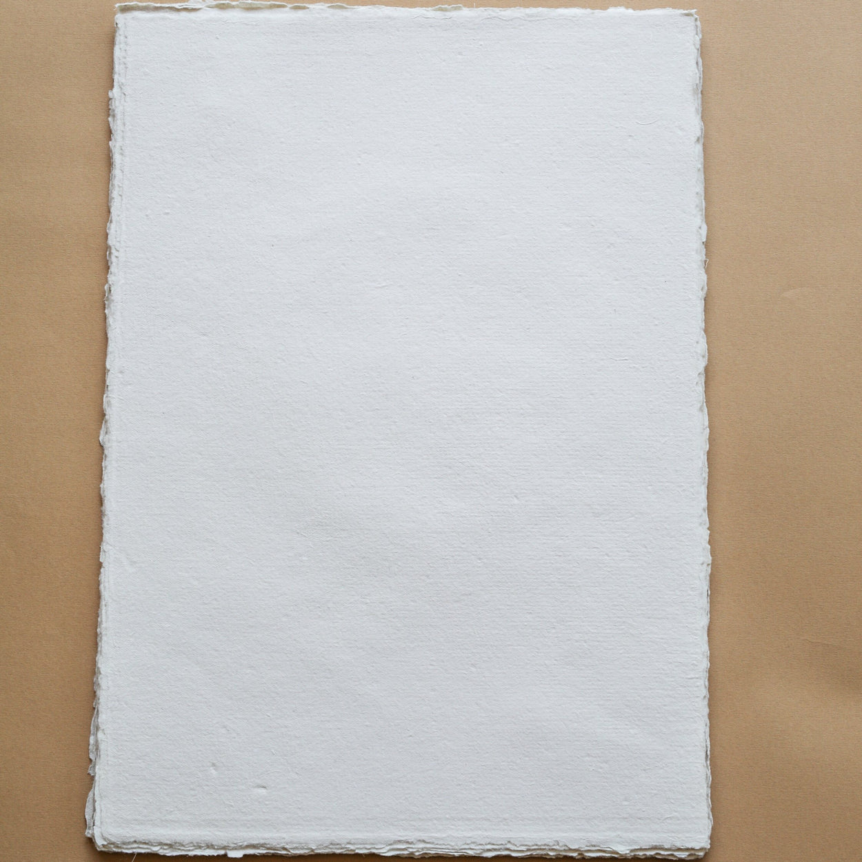 Beige deckle-edge cotton rag paper, A3