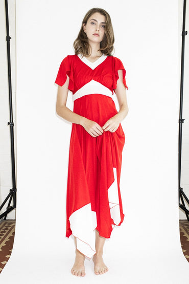 Vintage Red Flag Dress - THENINETYNINE