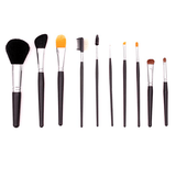 504 - 10 Piece Studio Set With Case - crown brush - makeup brushes