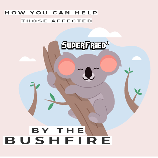 How you can help those affected by the bush fire