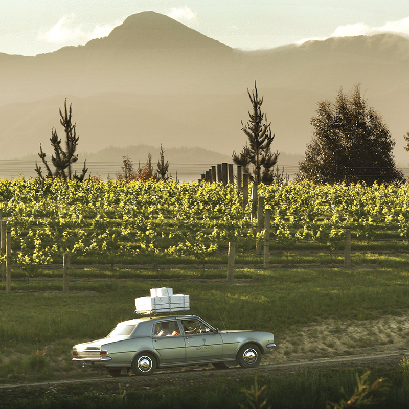 Marlborough, New Zealand – Dog Point Vineyard