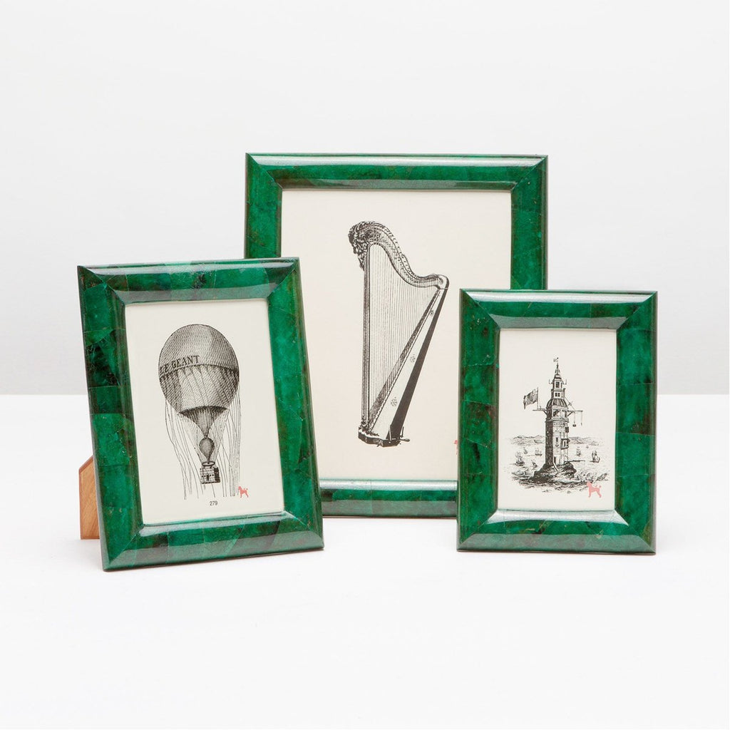 Pigeon and Poodle Orleans Emerald Shell Frame