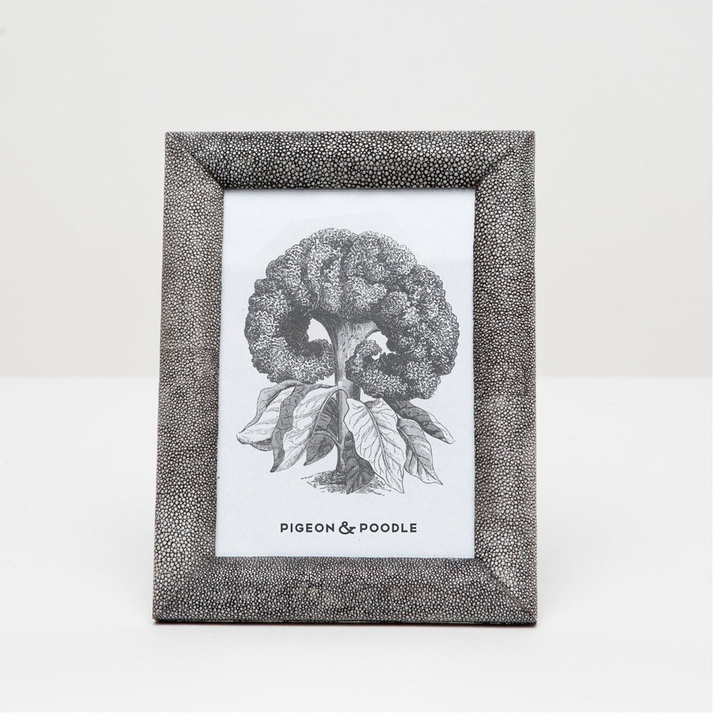 Pigeon and Poodle Oxford Realistic Faux Shagreen Frame