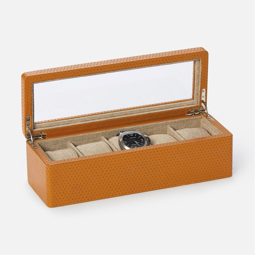 Pigeon and Poodle Leeds 5-Watch Box with Glass