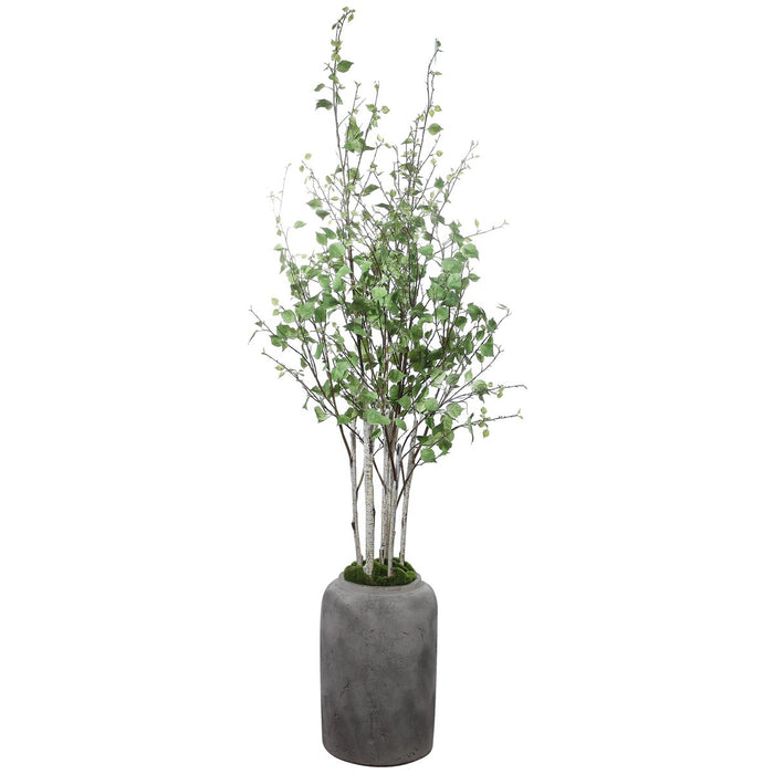 Uttermost Aldis Potted River Birch