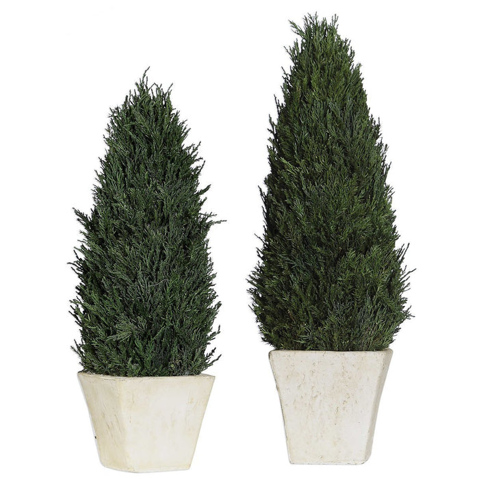 Uttermost Cypress Cone Topiaries, Set of 2