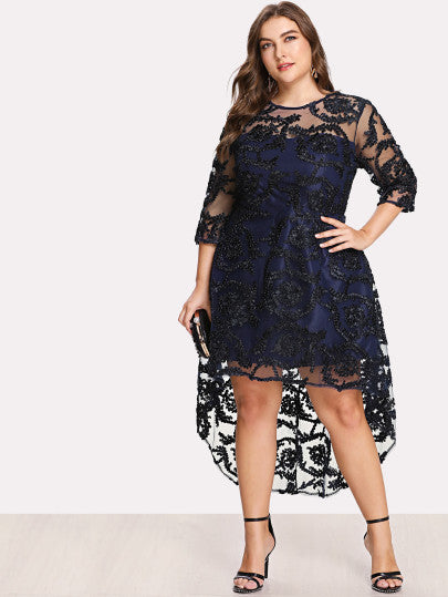 Applique Mesh Overlay Fit & Flare Dress