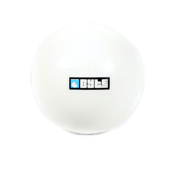 BYTE INDOOR BALL WHITE