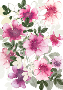 Dog Rose Card