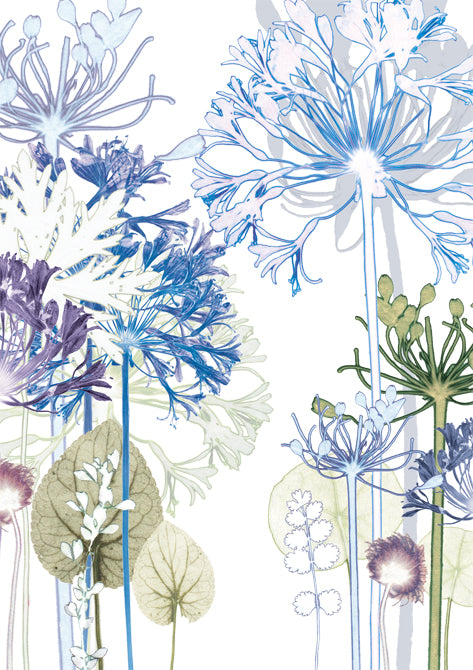 Agapanthus Forest Card