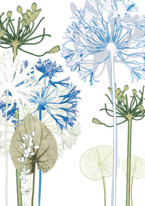 Agapanthus Forest 'Post it On' Card