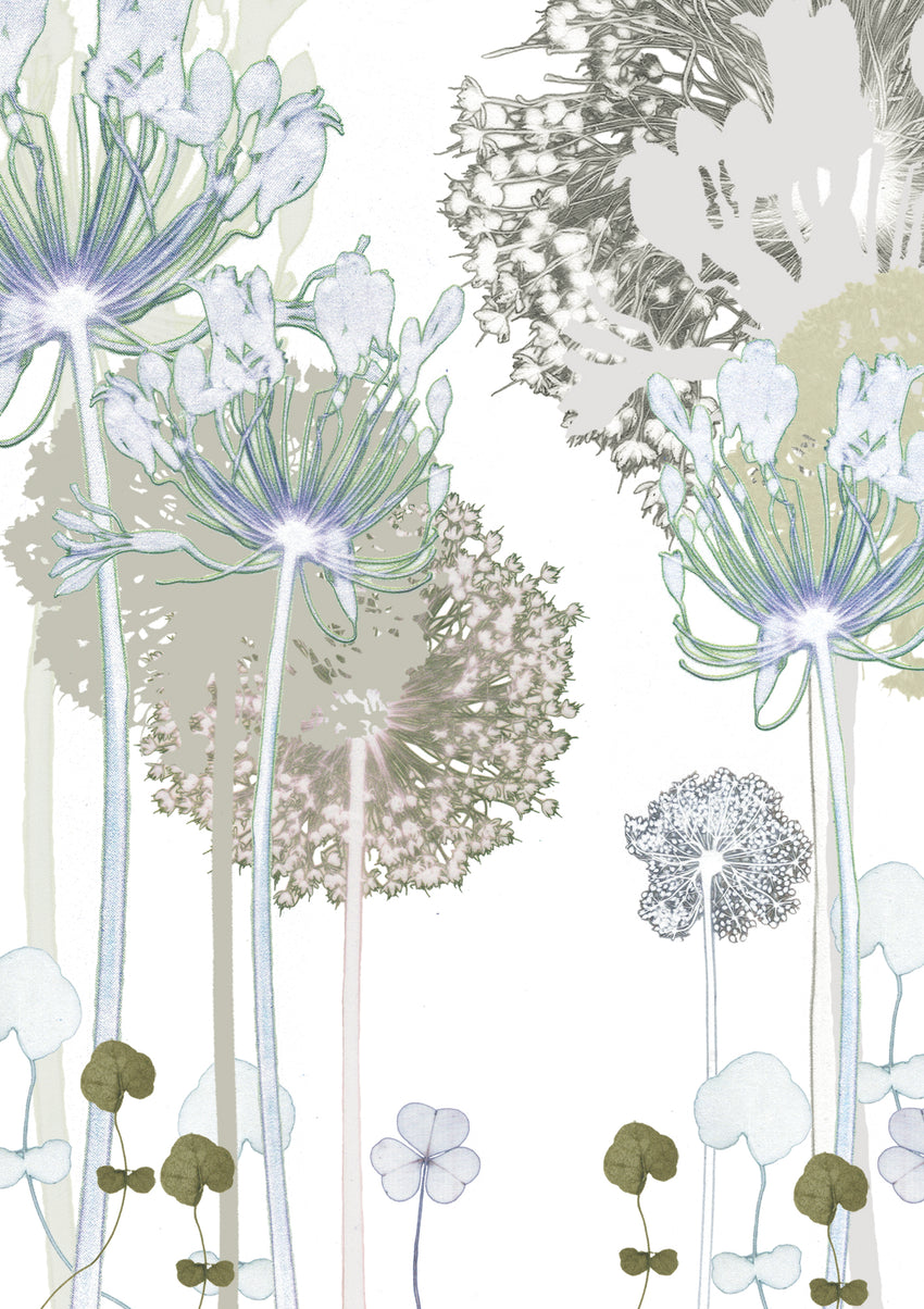 Agapanthus Garden 'Post it On' Card