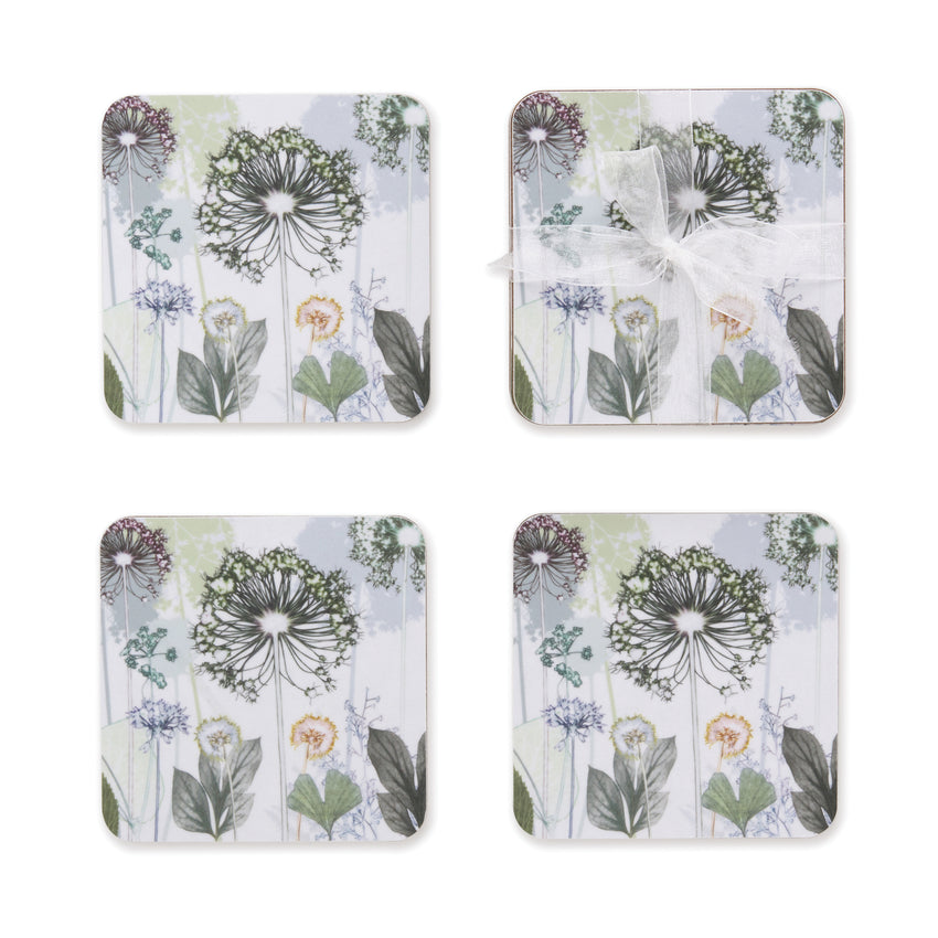 Allium Coasters