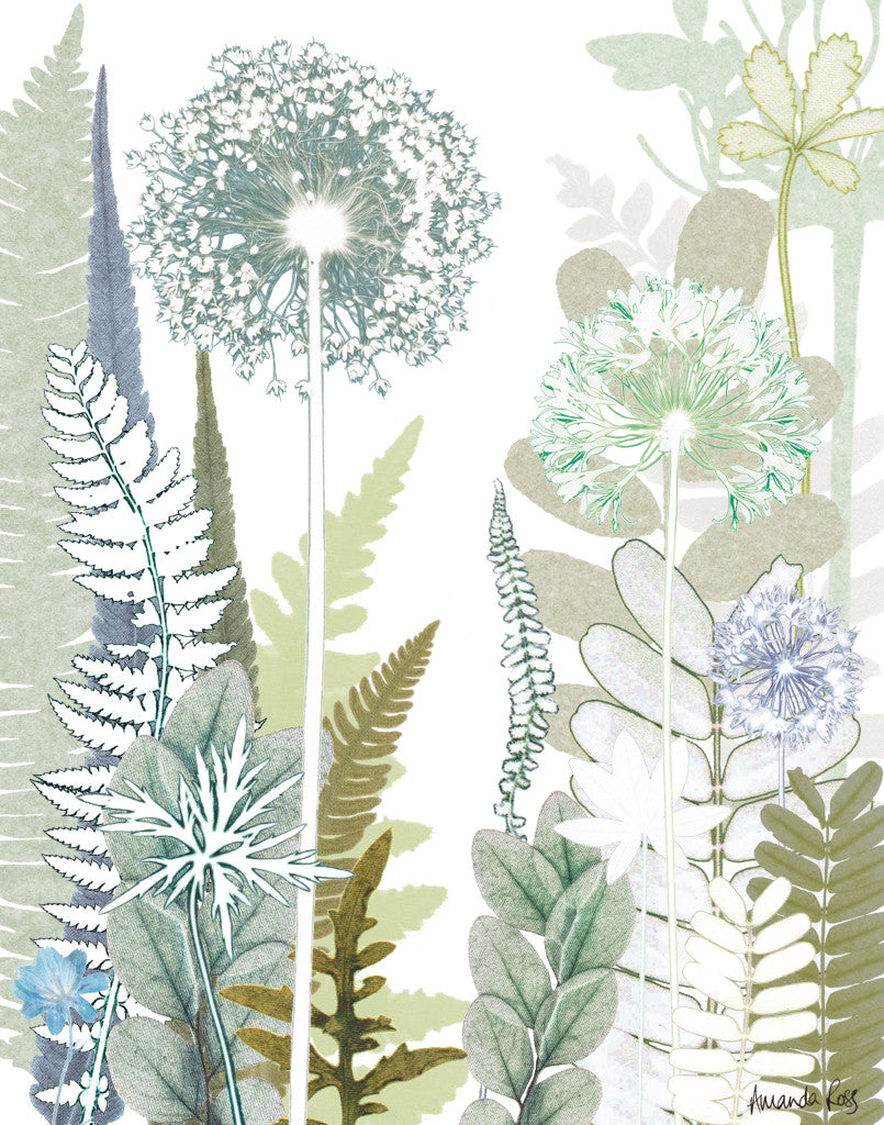 Allium Jungle Reproduction Print