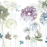 'Allium Ramble' Limited Edition Landscape Print