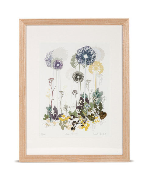 Allium Thicket Limited Edition Print