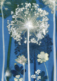 Blue Allium 'Post it On' Card