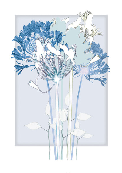 Blue Square and Agapanthus Print