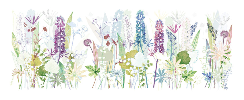 Chelsea Lupins 2015 Print