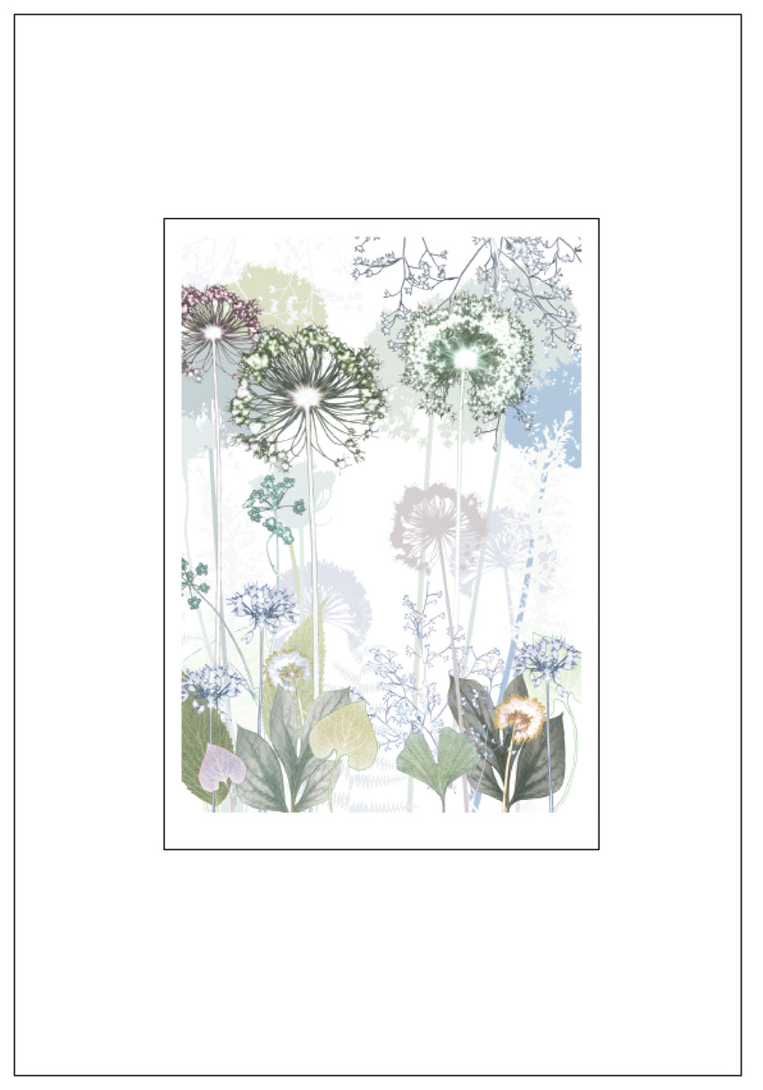 Green Allium Print