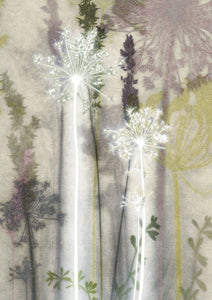 Hazy Cowparsley Card