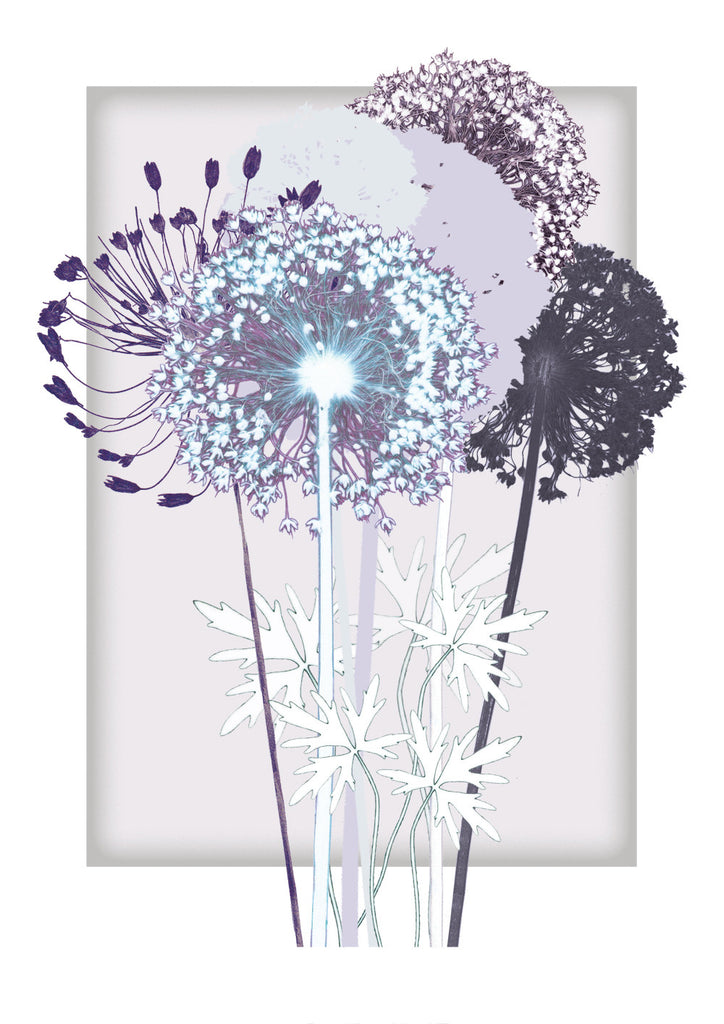 Lilac Square and Alliums Print