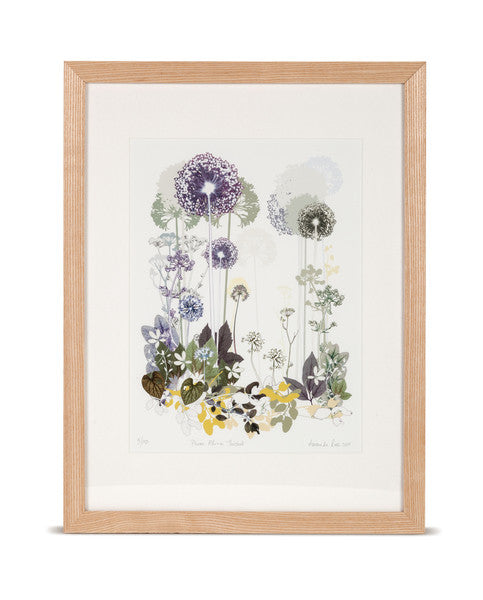 Plum Allium Thicket Limited Edition Print