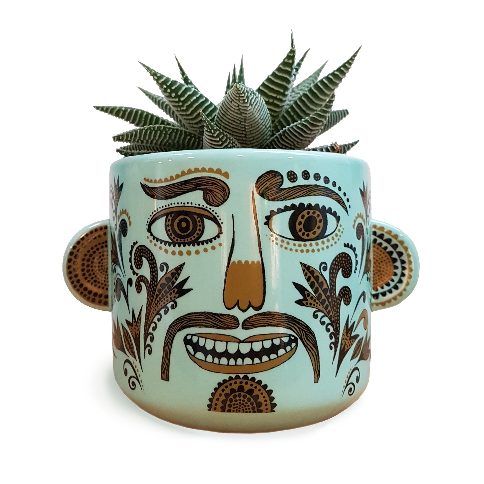 Plant pot with moustached funny face containing a spiky succulent plant