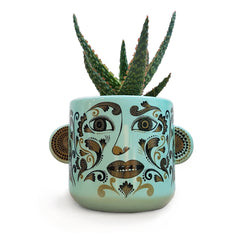 Lush Designs plant pot with clown like ladies face coloured green, and 3D ears containing succulent plant