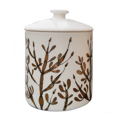 Bone china pot with lid printed with seaweed pattern in black and gold lustre
