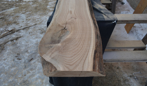 Elm -- Red Slab -- RE1346-1
