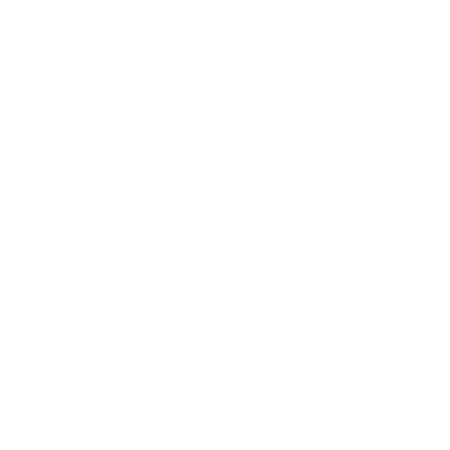 Conscious Creations