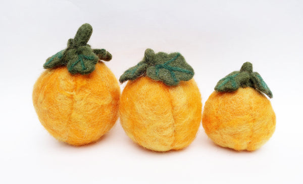 fall pumpkin set