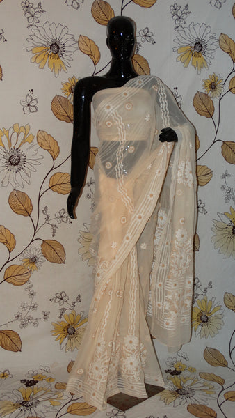 Rang Riwaaz Chikankari Beige Georgette Saree - Cotton thread chikan with heavy border and pallu RangRiwaaz lucknow sari