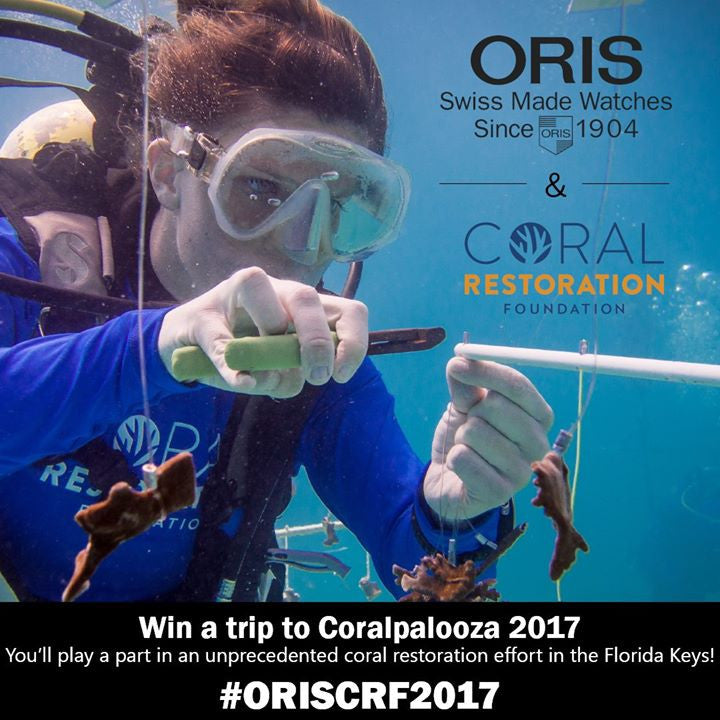 Win a Trip to Our Fabulous Florida Keys with Oris!