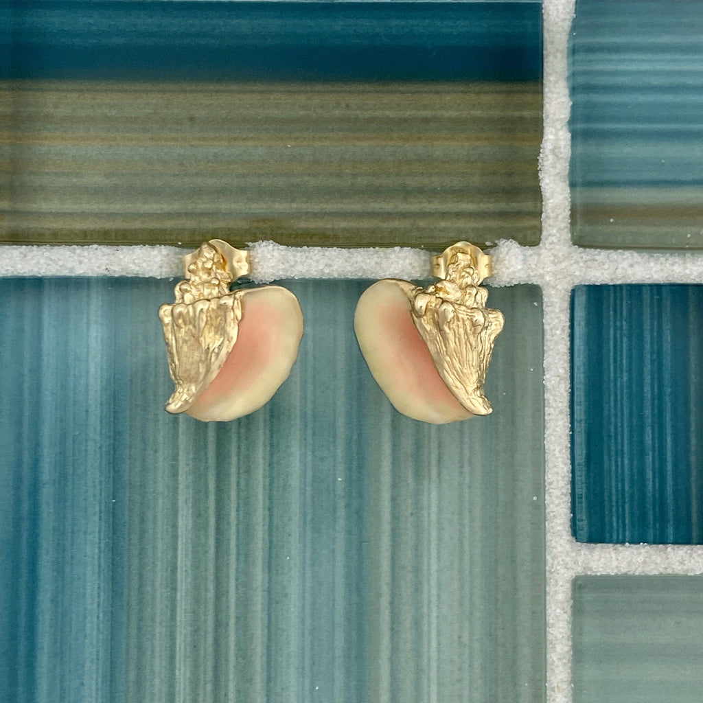 14k Yellow Gold Conch with Enamel Post Earrings - DePaulas