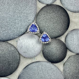 14k White Gold Trillion Cut Tanzanite .75cttw with Diamond Halo 1/8cttw Post Earrings