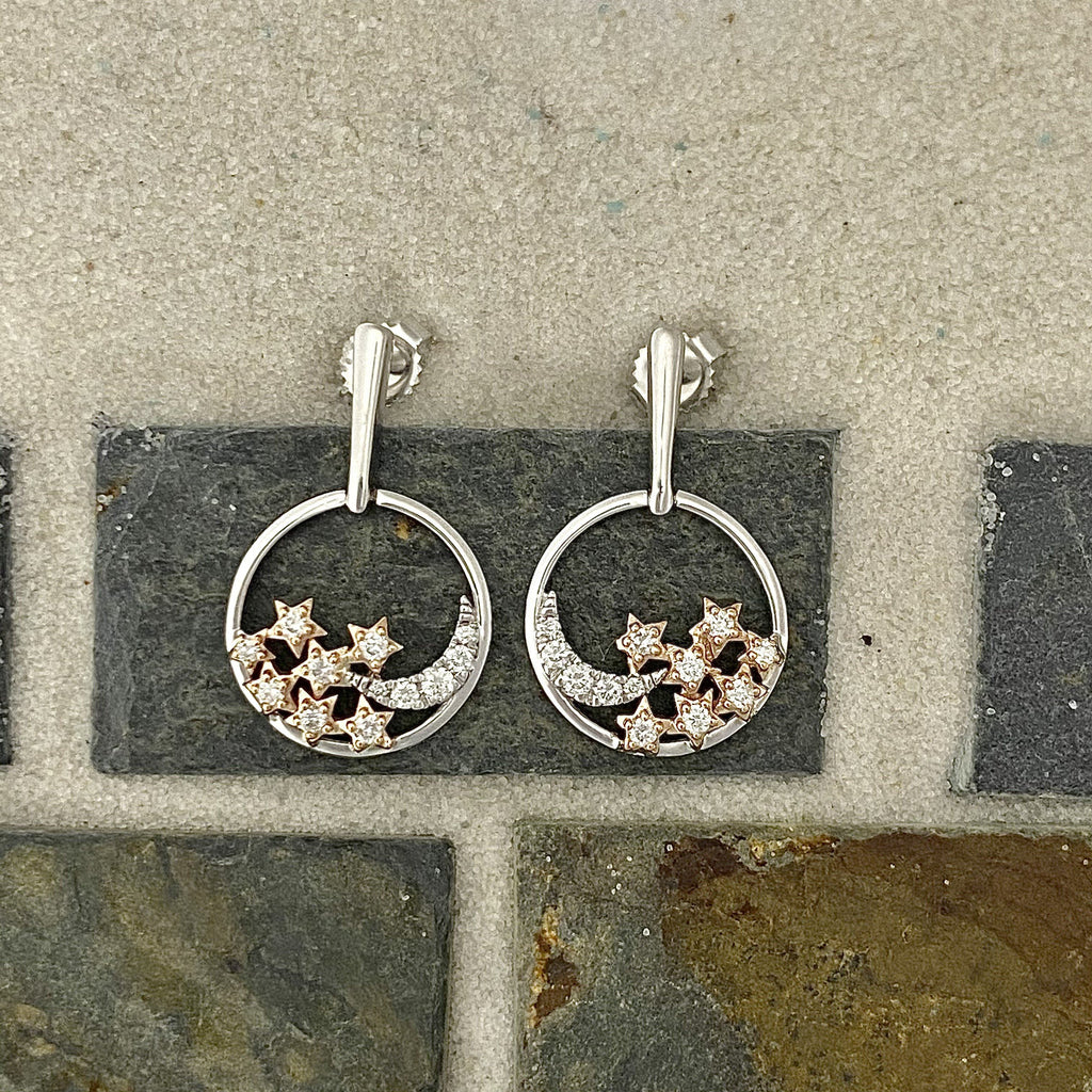 14k 2-Tone Diamond .25cttw Moon and Stars Post Earrings