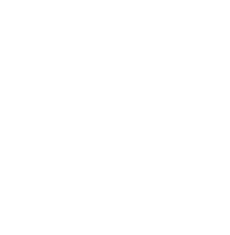 Holmes Brothers