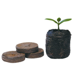 Jiffy 38mm Peat Plug - Propagation - Hull Hydroponics